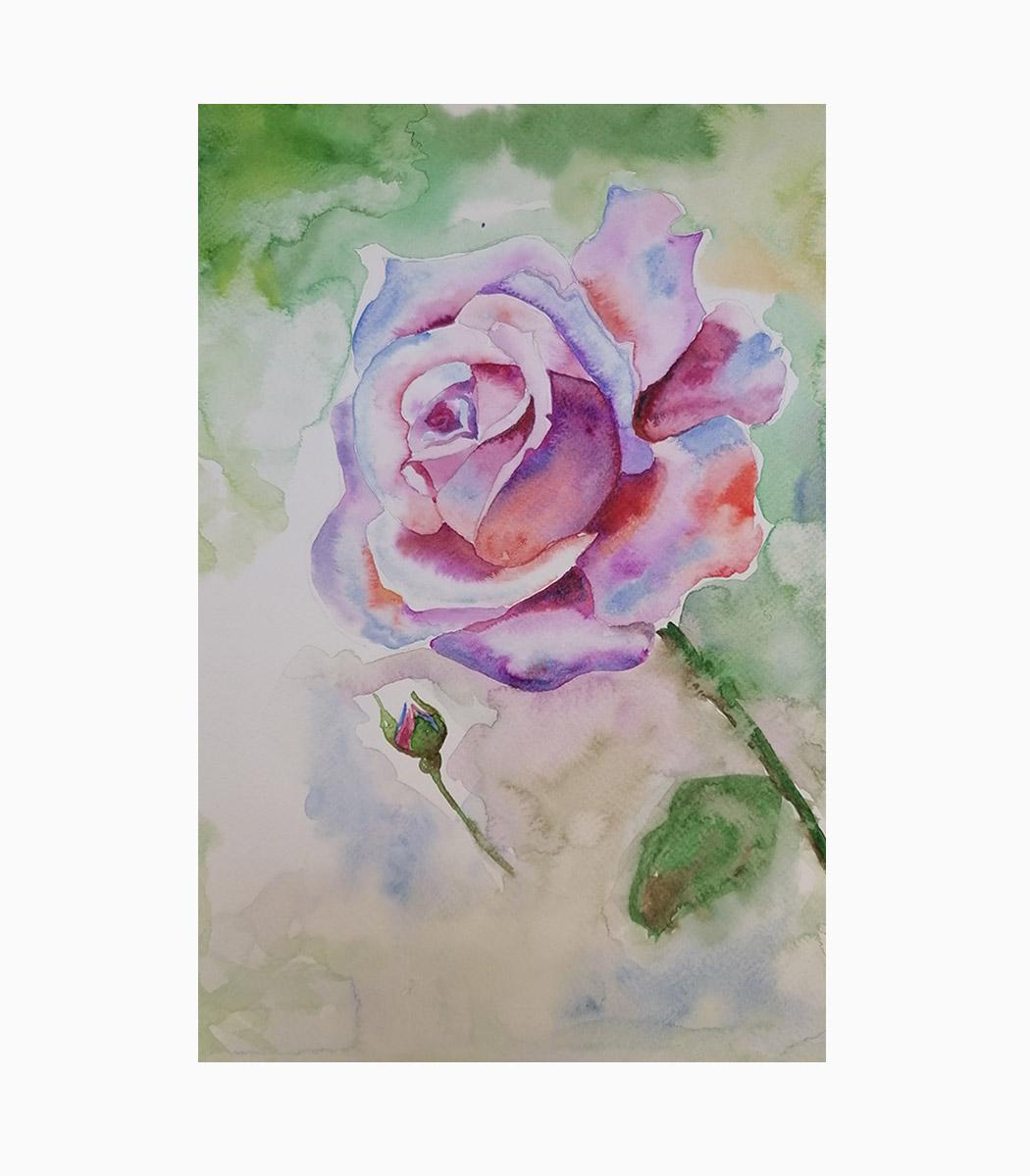 نقاشی آبرنگ گل رز