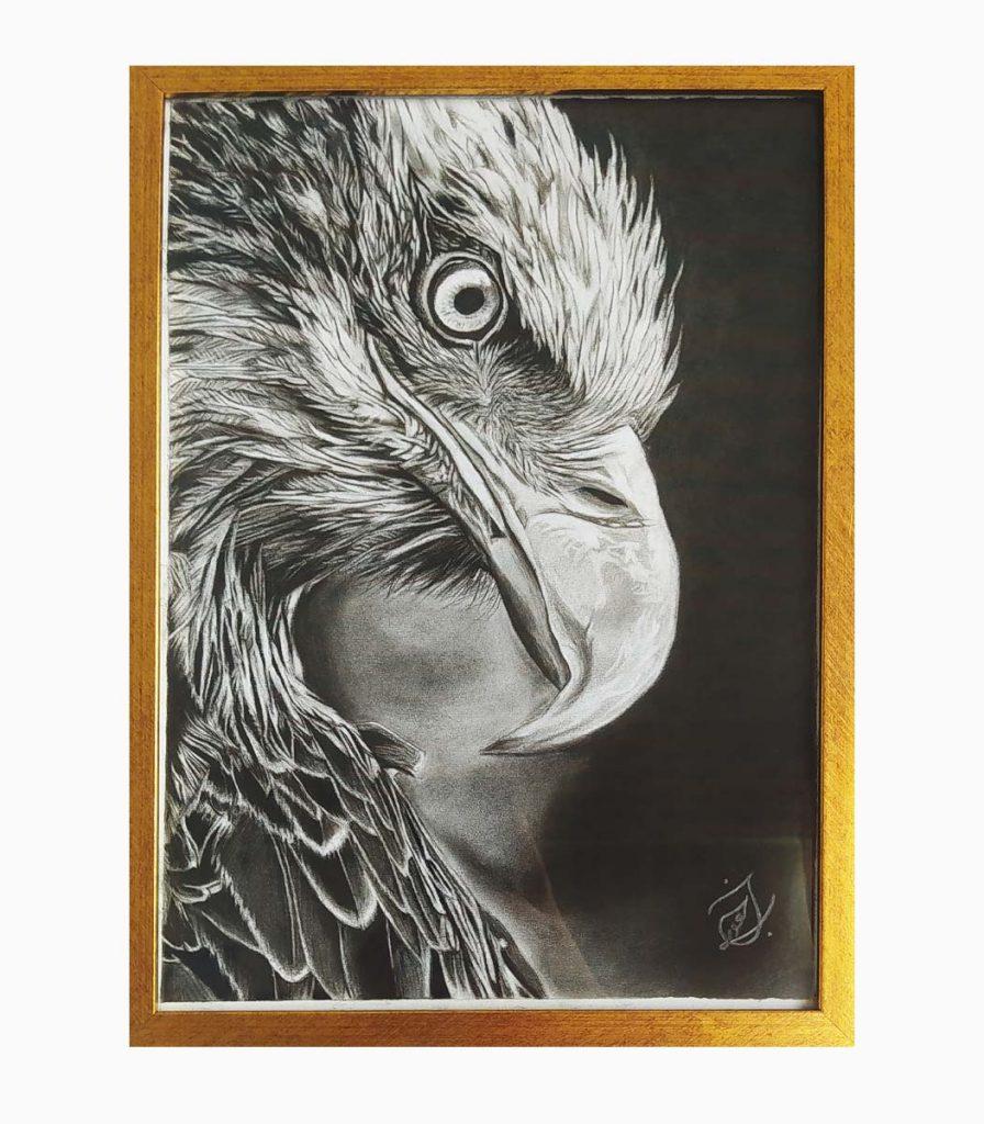 طراحی سیاه قلم عقاب