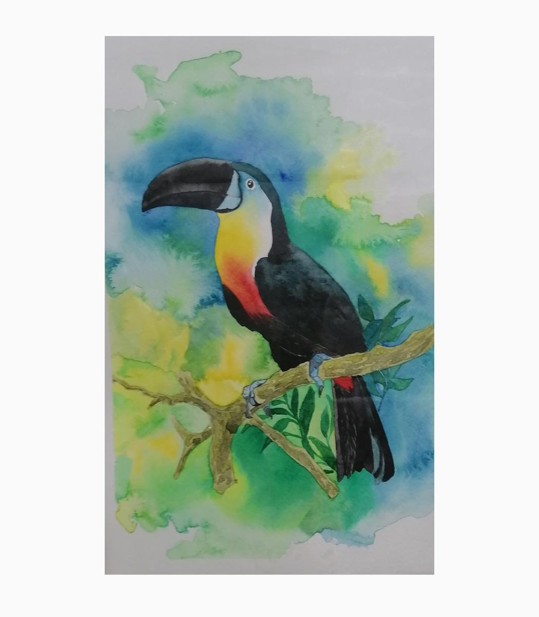 نقاشی آبرنگ توکا